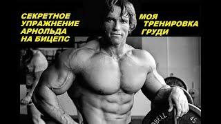 Секретное упражнение АРНОЛЬДА на БИЦЕПС/ Моя тренировка груди/Подтянулся на максимум