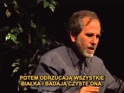 Bruce Lipton   The New Biology   Nowa Biologia Napisy pl część 1