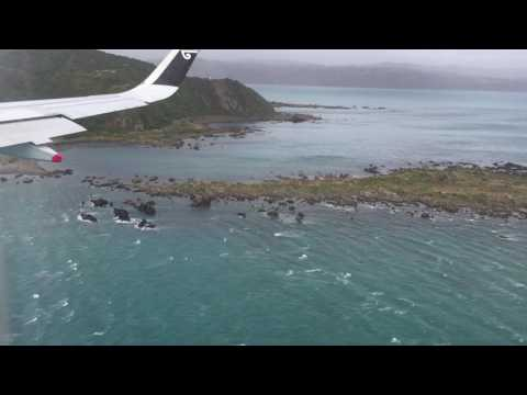 Freaky landing in Wellington