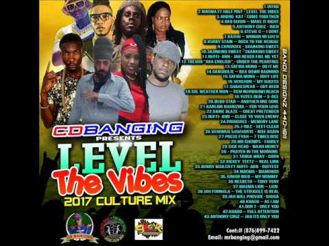 CD BANGING LEVEL THE VIBES 2017 AUGUST REGGAE CULTURE MIX CHRONIXX,VERSHON