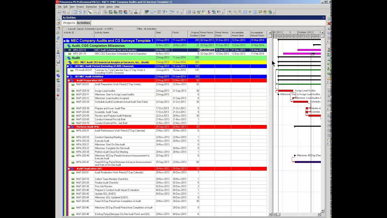 Primavera p6 gantt chart bars from user defined fields bar primavera p6 gantt chart bars from user defined fields bar color hierarchy nvjuhfo Images