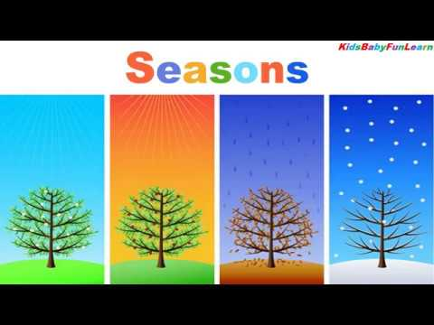 Download Children vocabulary ||Four Seasons - 4 seasons in a year || English educational video for kids