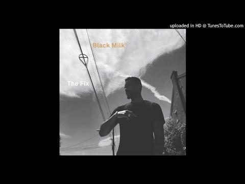 Black Milk - The Fix