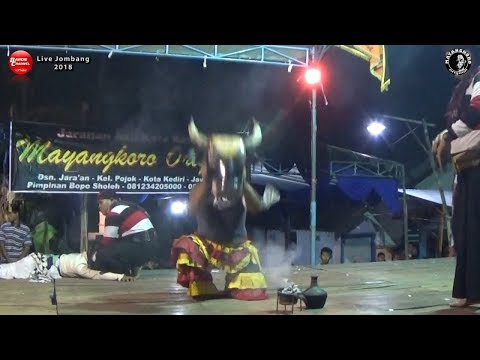 BANTENGAN Liar Ganas Turun Panggung Kejar Penonton Suit | MAYANGKORO ORIGINAL Live Perak Jombang