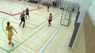 Naisten futsal-liiga 2018-2019 / Ylöjärven Ilves vs. FTK maalikooste 19.1.2019