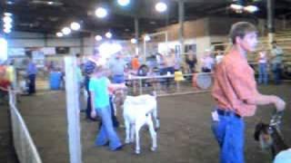 chushing oklahoma goat show