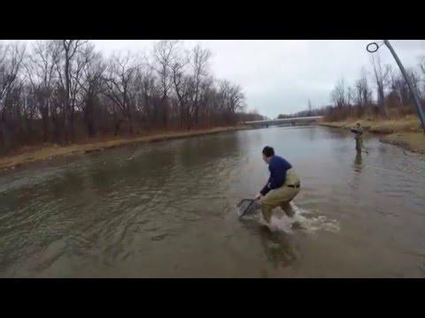 Steelhead Trout Fishing Trip - Grand River - Painesville, Ohio
