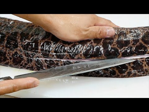 Japanese Street Food - GIANT MORAY EEL Sashimi Okinawa Seafood Japan