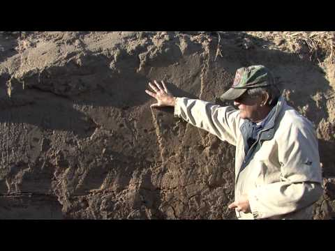Marion Haynes: Earthquake features - Historic evidence