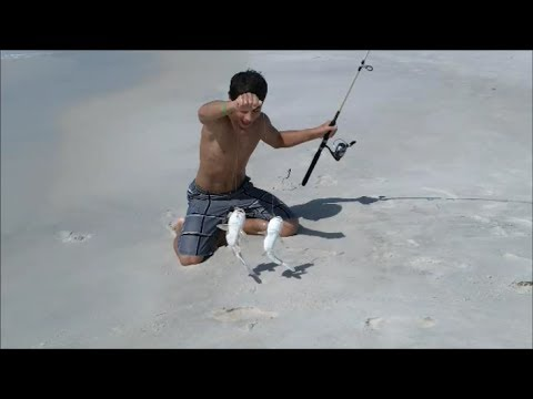 Saltwater Fishing Destin (Sea Trout, Ladyfish, Croaker, Jacks, Whiting .....)