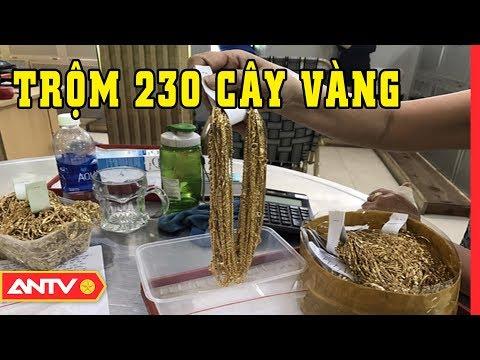 An ninh ngày mới hôm nay   Tin tức 24h Việt Nam   Tin nóng mới nhất ngày 19/01/2019   ANTV