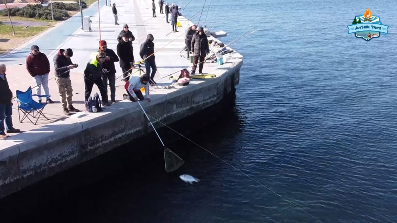 İskeleyi Balık Bastı!! / Soğuk Havada Dev Çupra ve Kalamar!!  - 10 Şubat 2020