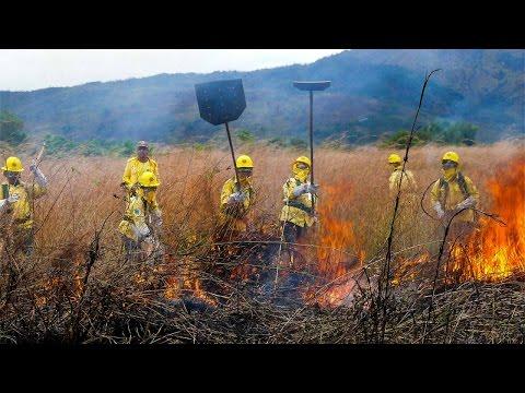 Curso Formação e Treinamento de Brigada de Incêndio Florestal - Rescaldo