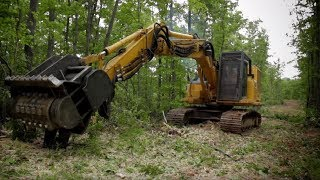 Modern Fast Tree Stump Clearing Machine Working - Equipment Excavator Stump Chipping