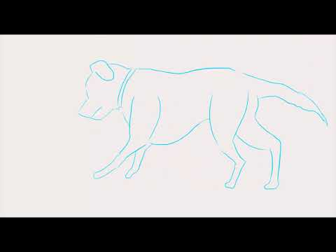 How To Draw A 2D Dog Running