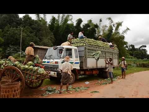 Myanmar (Burma) - Loading truck