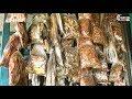 Kuakata Dry Fish Market | Kuakata Shutki Market | শুটকি মাছের বাজার কুয়াকাটা সমুদ্র সৈকত | HD