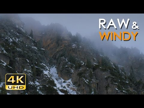 4K Raw & Windy - Snow Blizzard & Wind Sounds - Winter Nature Video - Relax/ Sleep/ Study - Ultra HD