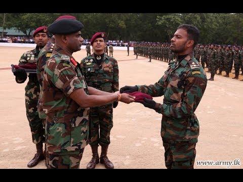 New 350 Commandos