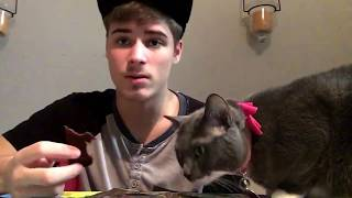 Carolina Reaper jerky challenge solo with a cat