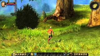 Dungeon Lords Steam Edition Gameplay PC HD 1080p