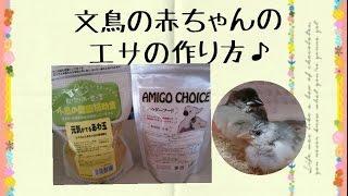桜文鳥(チョコ)&白文鳥(アイス)のえさの商品紹介と作り方です。みあ...