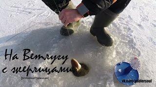 Ловля щуки на жерлицы. На Ветлугу по первому льду. Видео отчет  от 29 ноября 2015