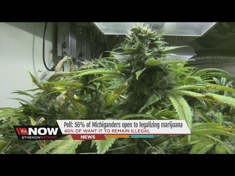 Channel 7 News Now Detroit – Debate: Should Michigan Legalize Marijuana With Thomas Lavigne