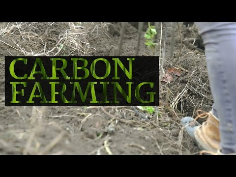 Carbon farming could fight climate change and produce more crops