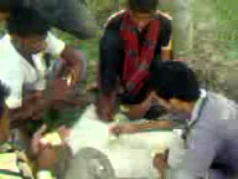 Game of GAFLA in ShahidGarden