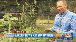 Garden Guy talks about organic gardening from his garden in Payson, Arizona