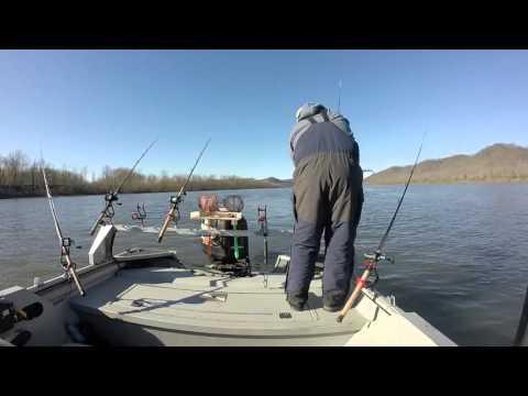 ohio river winter catfishing  2015