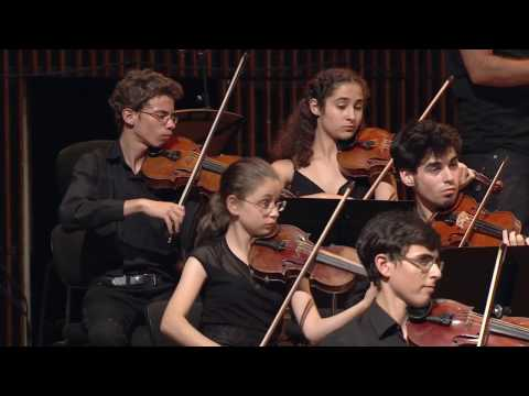 Beethoven Symphony no.5 The Jerusalem Music Centre YIPO Conductor Benjamin Zander