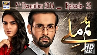 Tum Milay Ep 22 - 5th December 2016 - ARY Digital Drama