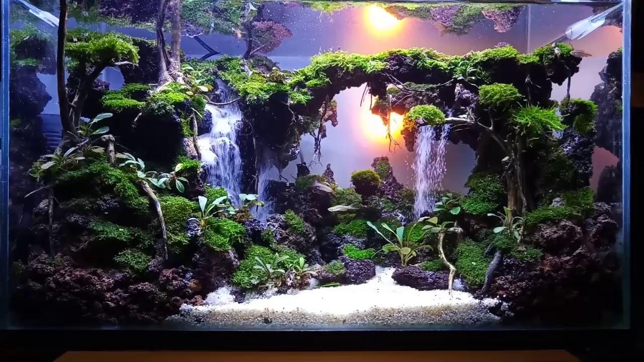 Waterfall aquascape - YouTube