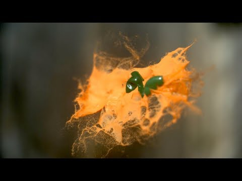 Download Youtube: Mid-air Paintball Collisions in Slow Mo - The Slow Mo Guys