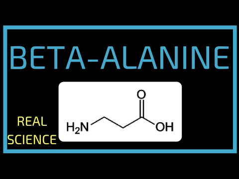 BETA-ALANINE | REAL SCIENCE