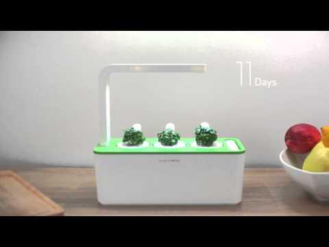 .家庭智慧種菜機:從此可以在家種菜了