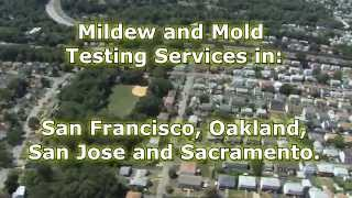 Mildew and Mold Testing