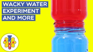 Easy Science Experiments - Wacky Water Experiment | Hot And Cold Water Science Experiment | LAB 360