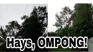 Gambar cover Vlog # 25 Hays, TYPHOON OMPONG! #OmpongPh