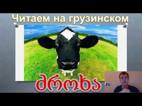 Анекдоты про коров -