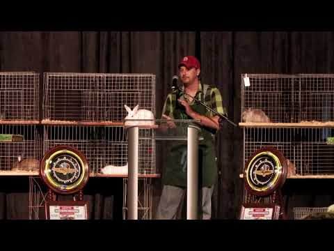 ARBA Convention 2017 Day 3 - BIS Judging