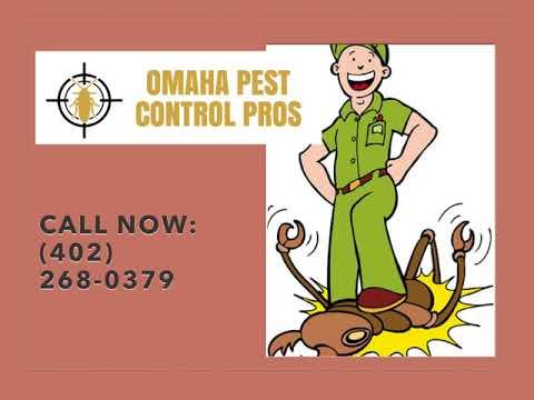 Omaha Mice Control