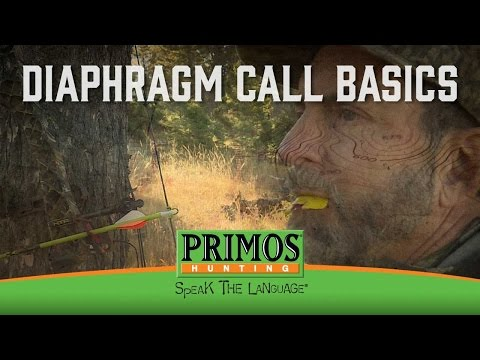 How To Call Elk With A Mouth Call