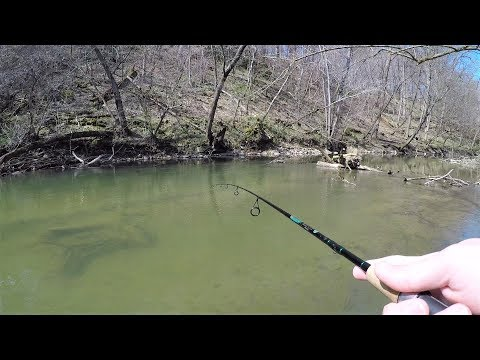 CREEK Fishing For TROUT (NEW PB!)