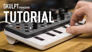Modal Electronics SKULPT synthesiser Walk Through Tutorial