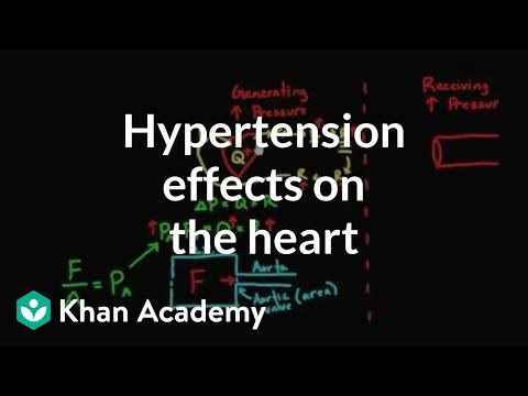 Hypertension effects on the heart