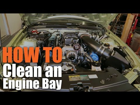 Clean+Protect: GUNK Engine Cleaner | How to Degrease Engine Bay