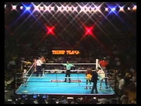 Jeff Harding v Dennis Andries I 24 June 1989 Atlantic City, New Jersey, USA